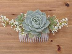 """Medium size succulent comb.The comb measures 3.25"""" across and the succulent is approximately 1.75"""" diameter."""