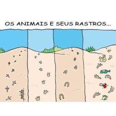 Animais e rastros