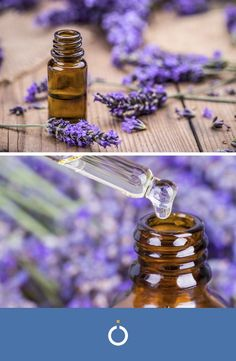 Olio do lavanda Diy Natural Beauty Recipes, Diy Beauty, Handmade Cosmetics, Medicinal Plants, Kraut, Essential Oils, Hobby, Health Club, Perfume Oils