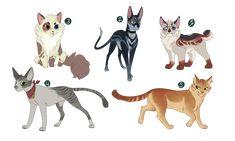1/5 OPEN - Warrior Cat Adoptables by OwlCoat.deviantart.com on @DeviantArt