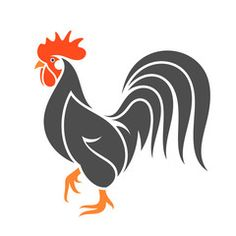 Rooster stock photos and royalty-free images, vectors and illustrations Rooster Tattoo, Rooster Art, Bird Silhouette Art, Silhouette Portrait, Chicken Painting, Chicken Art, Black Chickens, Chickens And Roosters, Hahn Tattoo