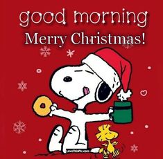 Snoopy Good Morning Merry Christmas - New Ideas Snoopy Love, Charlie Brown Y Snoopy, Charlie Brown Christmas, Snoopy And Woodstock, Peanuts Christmas, Christmas Cartoons, Christmas Humor, Xmas, Christmas Christmas