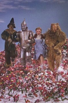 tin man by judy budnitz A different actor, buddy ebsen, was actually supposed to play the tin man, but then his lungs failed the original costume for tin man involved covering ebsen in aluminium dust which ended up.