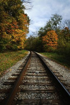 The Long Path --- Train? Horse pulled Iron Wagon?