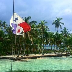 Conóce el paraíso en sólo un día! Ahora puedes visitar 3 islas y comer comida local caribeña en nuestro San Blas Daytour! #WanderPanther #Panama #Adventure  Para más información escríbenos por whatsapp al 6263-9981