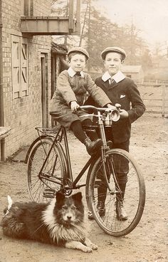 +~+~ Antique Photograph ~+~+ Brothers, a bike and a boys best friend.