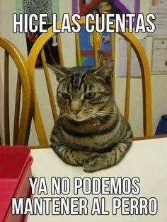Cuentas http://www.grafichistes.com/graficos/cuentas/ - #Chistes #Humor http://www.grafichistes.com