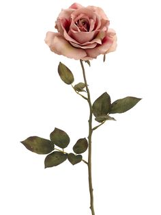 single long stem rose rose single stem 150x150 flowers language tattoos pinterest. Black Bedroom Furniture Sets. Home Design Ideas