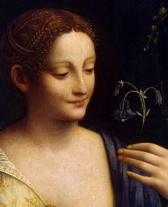 """""""Flora"""" by Francesco Century Italian Renaissance, Renaissance Art, Superman Artwork, Hermitage Museum, Portraits, Elisabeth, Famous Art, Classic Beauty, Art Techniques"""
