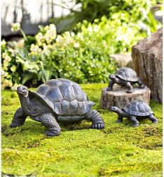 Plow & Hearth Tortoise Family Resin Garden Accents Statue 53562 Plow & Hearth This delightful tortoise trio will slowly and steadily make their way into your list of garden-gracing favorites. Cast in resin with intricate, realistic reptile details, the… Wood Raised Garden Bed, Raised Bed, Baby Tortoise, Tortoise Food, Sulcata Tortoise, Tortoise Care, Outdoor Garden Statues, Garden Statues For Sale, Gnome Statues