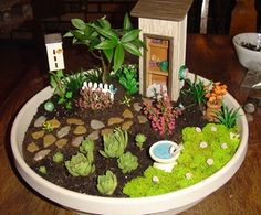Growing a miniature garden in a dish! So fun for kids. It even says on the site that you can use old shoes or any container as long as it meets the parameters required for growth.