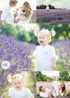 A family photo shoot in the lavender fields - Vicki Knights Photography
