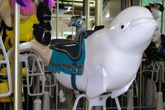 A cute beluga whale on the Paul Titus Antique Carousel at the Point Defiance Zoo & Aquarium, Tacoma WA Carosel Horse, Amusement Park Rides, Wooden Horse, Painted Pony, Merry Go Round, Zebras, Reborn Dolls, Reborn Babies, Baby Dolls