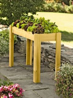 Salad Bar Garden - awesome for the back patio - kitchen garden and could be easily made at home!