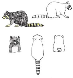 Racoon pattern Intarsia Wood Patterns, Wood Carving Patterns, Woodworking Organization, Woodworking Projects Plans, Diy Woodworking, Soap Carving, Carving Wood, 3d Cuts, Pattern Images