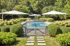 Garden Home   Hollander Design Backyard Pool Landscaping, Backyard Pool Designs, Swimming Pools Backyard, Swimming Pool Designs, Pool Landscape Design, Lawn And Landscape, Outdoor Pool, Outdoor Gardens, Outdoor Spaces