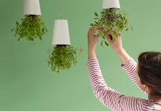 Modern Hanging Upsidedown planter.