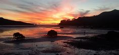 Remote Coast tours with Coromandel Adventures in the beautiful Coromandel Peninsula Remote, Coast, Tours, Celestial, Activities, Adventure, Sunset, Outdoor, Beautiful