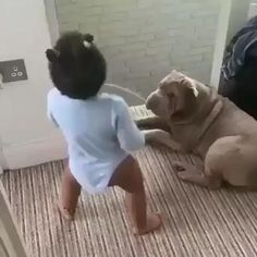 Funny Baby Memes, Cute Funny Baby Videos, Cute Funny Babies, Funny Videos For Kids, Funny Video Memes, Videos Funny, Haha Funny, Cute Kids, Funny Cute