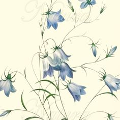 botanical print, blue flower print 128,  produced from a vintage illustration upcycled from a bookplate.. $10,00, via Etsy.