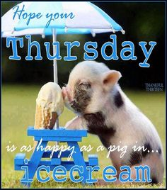 To day happy Thursday or you can say good Thursday and we can celebrate this with happy Thursday meme. The weekend is so close that you can almost smell it. Thursday Meme, Thursday Greetings, Happy Thursday Quotes, Good Morning Thursday, Good Morning My Friend, Thankful Thursday, Good Morning Good Night, Good Morning Quotes, Happy Quotes