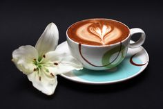 A flower for this morning coffee by Valentin David