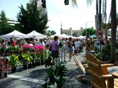 Saturday Morning Market - Downtown St. Pete