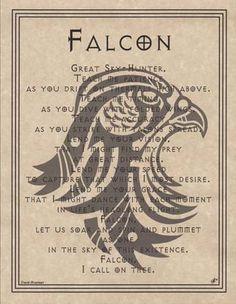 Spirit Totem Animals:  Falcon.