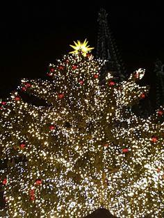 Weihnachtsmarkt  Köln Dom