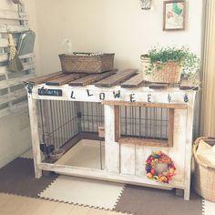 Diy Bunny Hutch, Diy Bunny Toys, Diy Bunny Cage, Diy Guinea Pig Cage, Bunny Cages, Pet Bunny Rabbits, Pet Rabbit, Puppy Nursery Theme, Bunny Care Tips