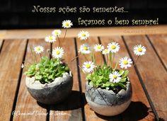Devocional Dádivas do Senhor: A bondade que retorna...