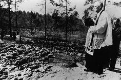 Fosa común en el bosque de Katyn, territorio perteneciente entonces a la Unión Soviética, se convierte en el escenario de la cruenta masacre...