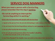 Useful Dog Obedience Training Tips – Dog Training Service Dog Training, Dog Training Videos, Service Dogs, Psychiatric Services, Psychiatric Service Dog, Support Dog, Emotional Support Animal, Military Dogs, Therapy Dogs