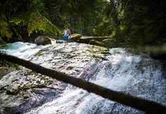 8,836 Followers, 758 Following, 1,287 Posts - See Instagram photos and videos from Zoya in Revelstoke, BC (@zoyalynch) Revelstoke Bc, Waterfalls, Wedding Photography, Photo And Video, Videos, Instagram Posts, Photos, Pictures