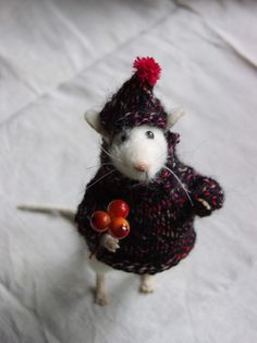 mouse wearing hat. OMG! This is so cute that it is making me cry! knock knock knock at the door. open door. find this little mouse!