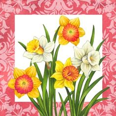 Spring Color Daffodils By Elena Vladykina