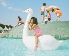 """Kiss me"" project by Nagano Toyokazu #pool #swan #cigno #cigne - Carefully selected by GORGONIA www.gorgonia.it"