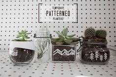 patterned_planters