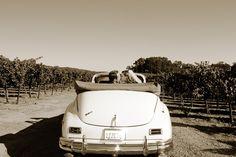 Vintage Getaway Car In The Vineyards. Winery Wedding Inspiration.