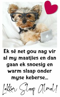 Photos Of Good Night, Good Night Quotes, Good Night Sleep Tight, Afrikaanse Quotes, Good Night Blessings, Good Night Greetings, Goeie Nag, Quotes For Whatsapp, Night Messages