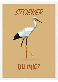 Storker - Hipd.dk