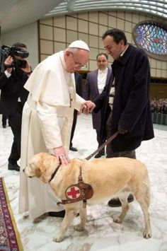 The new pope, Pope Francis, went out of his way and broke some ceremonial rules on Saturday to meet Asia, a journalist's guide dog. Asia is one of the first to be blessed by the new pope.