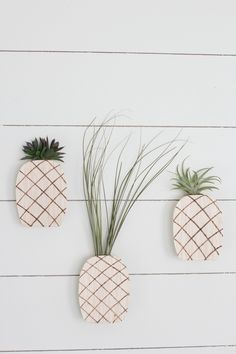 always rooney: Pineapple Air Plant Holder | DIY