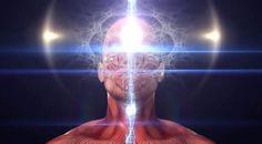 Deine Realität ist lediglich ein Spiegelbild deiner Schwingungen - Alles im Universum besteht aus Energie und Materie; alles, was Energie und Materie darstellt, ist eine energetische Vibration. Energisches Vibrieren zieht ähnliches Vibrieren an. Das ist das Gesetz...