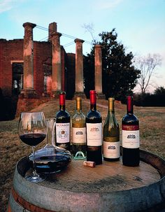 Barboursville Vineyard, Barboursville, Virginia