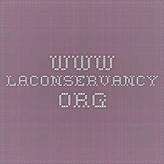 www.laconservancy.org see RESOURCES at end of article