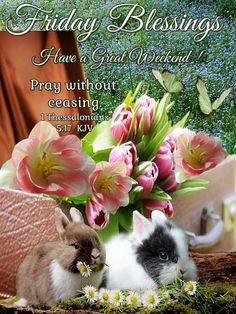 "FRIDAY BLESSINGS: 1 Thessalonians 5:17 (1611 KJV !!!!) "" Pray without ceasing."" HAVE A GREAT WEEKEND !!!!"
