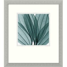'Leaf Bouquet' by Steven N. Meyers Framed Photographic Print