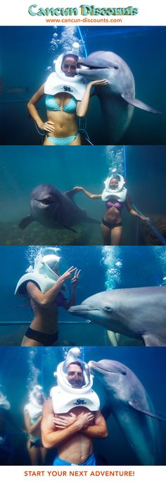 An awesome experience you can only have at Xel Ha Park near Cancun! Not only will you get to interact with real live dolphins in their natural habitat, you'll get to do it underwater!