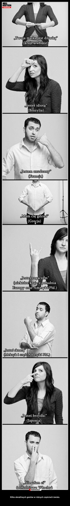 Mish Mash, Wtf Funny, Percy Jackson, Fun Facts, Beautiful Pictures, Geek Stuff, Humor, Memes, Comic